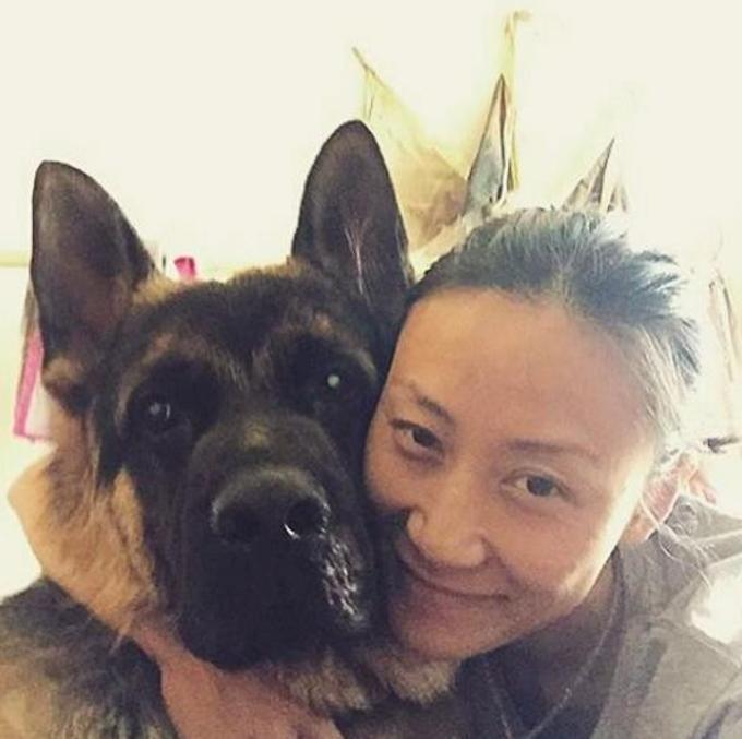 9 giorni sotto le macerie: salvato un cane