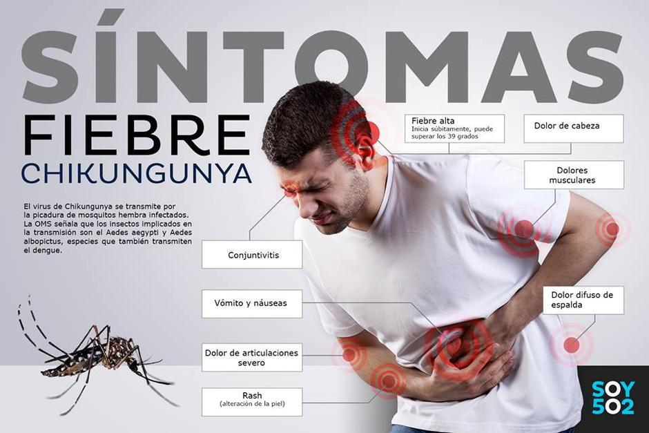 Ad Anzio tre casi di Chikungunya. Cos'è e come si trasmette